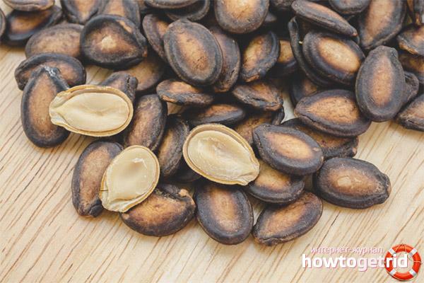 Lợi ích của hạt dưa hấu