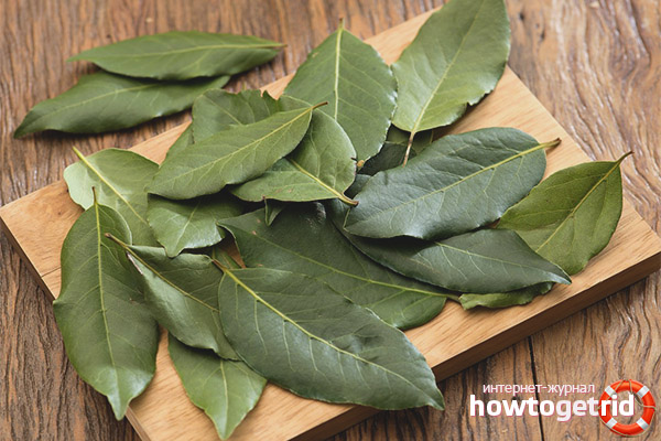 Какво е полезно дафинов лист