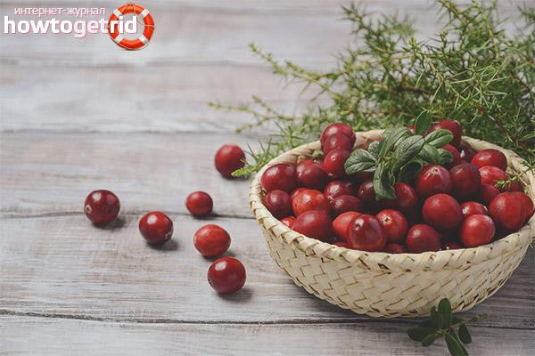 Cranberries bei chronischer Blasenentzündung