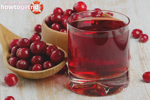Regeln für die Herstellung von Cranberry-Saft