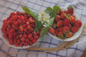 Каква е разликата между ягоди и ягоди