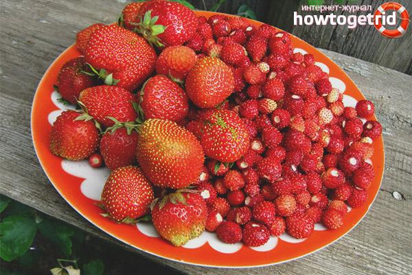 Ягоди и ягоди