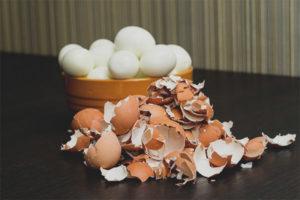 Alerji yumurta kabuğu