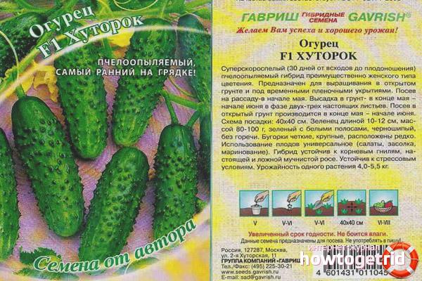 Salatalık Khutorok F1