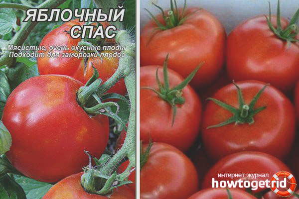 Tomatenapfel gespeichert