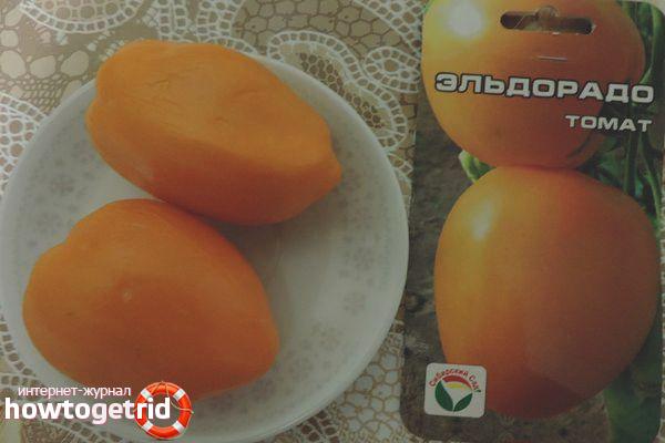 Tomaten-Eldorado