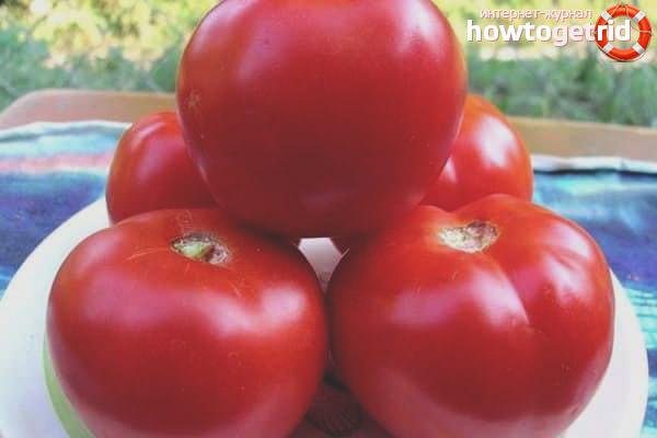 Yula de tomate