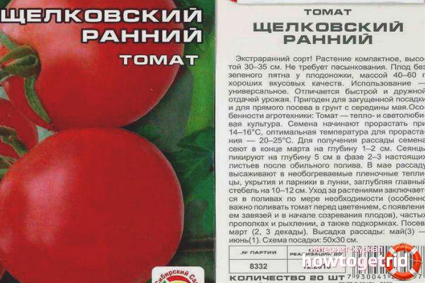 Tomate Schelkovsky früh