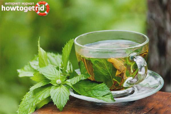 Receptes de tè de fulla de gerds