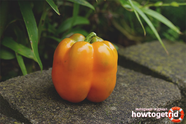 Pepper Orange Miracle