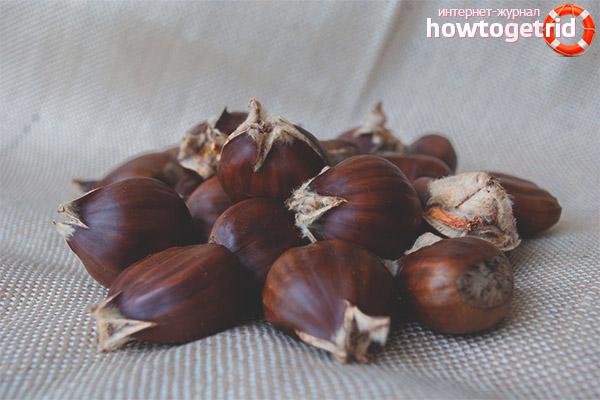 Propietats útils de les castanyes comestibles